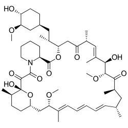 Rapamycin CAS No. 53123-88-9
